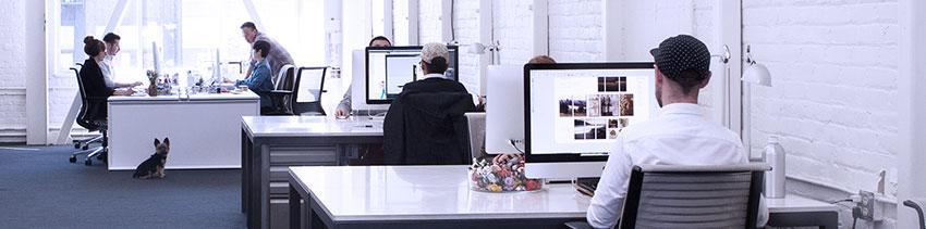 sanatatea-unui-web-designer-munca-de-birou